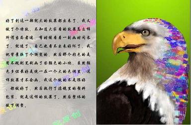 PhotoShop鼠绘一只彩色羽毛的鹰