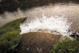 高明 生活污水不再直排母亲河