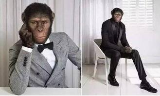程序猿与码农 码奴 码畜,你属于哪一类 也许你连