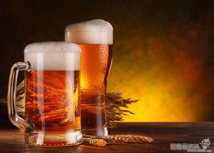 为什么有的人不喜欢喝啤酒 喝啤酒为什么不香发苦
