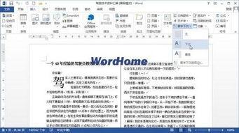 Word2013中怎样设置首字下沉或悬挂