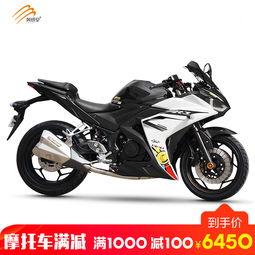 风感觉R3地平线摩托车跑车150 400cc双缸水冷新川崎排气管小忍者街车风 ...