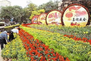 景观花坛迎盛会