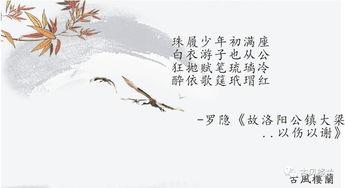 关于人各有长的诗句