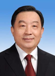 副委员长王晨