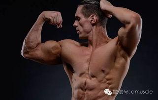 哪6个训练细节让手臂比肌友大一圈