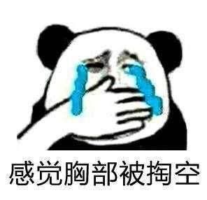 我告诉自己不准哭表情包熊猫头流泪捂嘴在线制作模板gif之家
