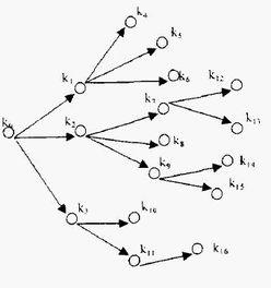 关于知识树的大全