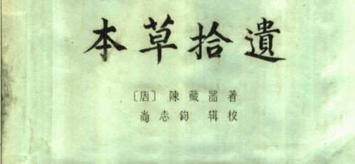 描述茶的金句