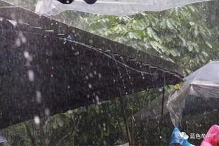 K线形态之倾盆大雨