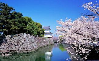 到日本旅游注意事项