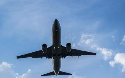 35岁男子飞机上猥亵女乘客,民警上门寻找家中有妻子老人,被拘留