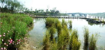 游北京南海子湿地公园