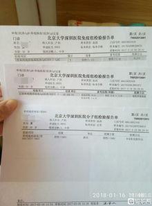 我的产检报告 TORCH五项IGG IGM