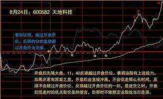 股票里的开盘指得是什么意思?请详细一点教我