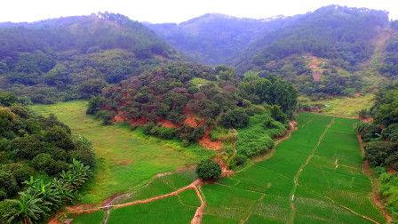 梧州南蛇嶺風水