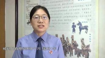 2019年4月,大刘因犯诈骗罪被判处有期徒刑3年,缓刑3年,并处罚金5000元.