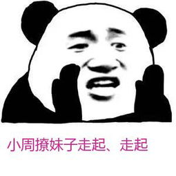 表情 张学友熊猫头喊话表情 小周撩妹子走起 走起 九蛙图片 表情