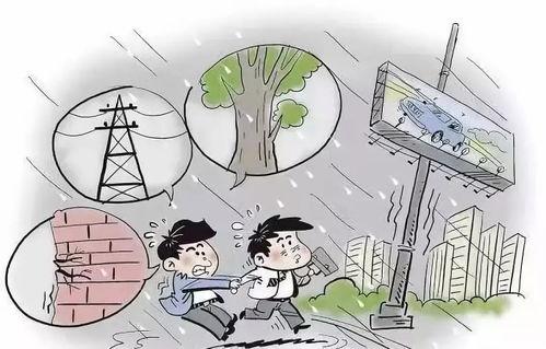 关于台风小知识