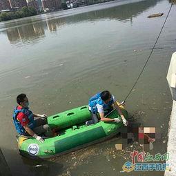 上饶广丰失踪6岁女孩小雨佳遗体已被打捞上岸多图