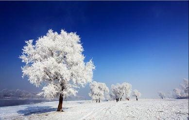 怎样给静态雪景加上大雪纷飞的效果