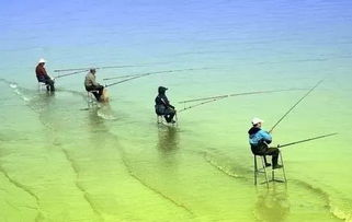 用哪些东西可以钓鱼