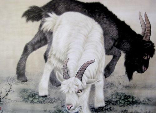 1979年属羊女适合的风水