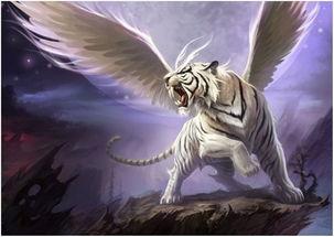 """风水学里所说的""""白虎""""和""""朱雀""""指什么(算命里的白虎指的是什么"""