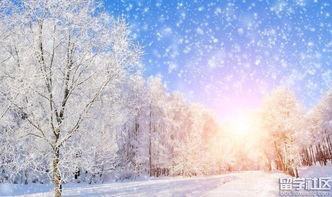雪景的诗句