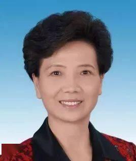 贵州省委副书记、省长谌贻琴代表