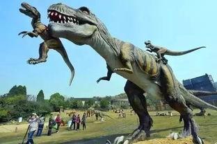 了解恐龙小知识