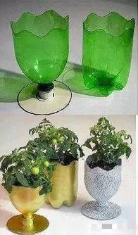 怎么用饮料瓶养花