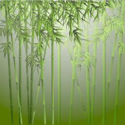 竹在古诗词