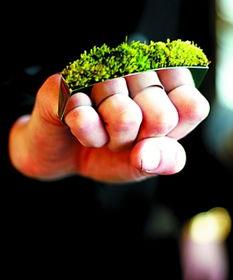 小草戒指盆景包 过年送TA 低碳饰品