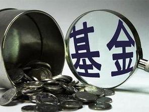 基金121003(国投瑞银核心价值历史净值)_1679人推荐
