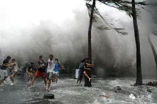 台风安全小知识20字6
