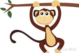 属猴和什么属相最配婚姻_女性属猴和什么属相最配婚姻
