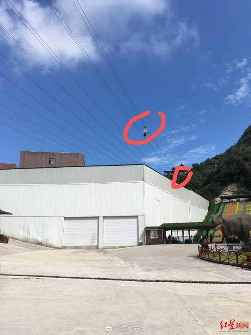 重庆网友爆料有人在景区高空项目中坠落当地旅游局回应
