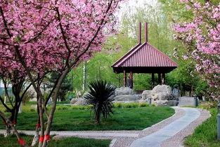 春天的公园作文的开头