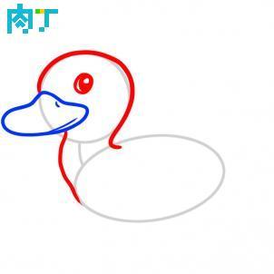 ...园小鸭子简笔画简单卡通画-幼儿园小鸭子简笔画