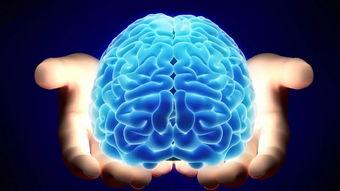脑主元神,是生命枢机;脑损伤会使思维肢体运动障碍  西医脑主神志