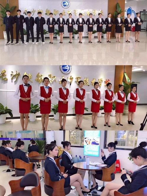 航空服务礼仪概论  机场地勤礼仪的内容