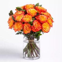 七夕送花,不得不知的玫瑰花语