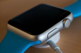 canalys2019q3小米可穿戴设备市场份额全球第一苹果华为紧随其后
