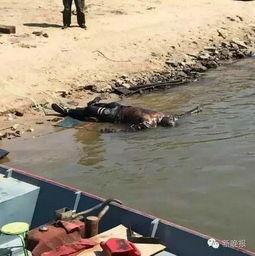 哈理工大一男生失踪29天尸体在江边找