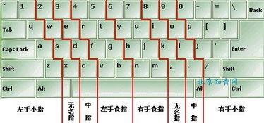 打字指法图(电脑打字技巧口诀)