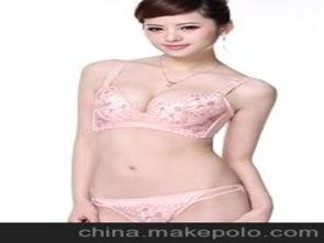 中国女内衣品牌代理