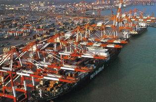重庆自贸区概念股票有哪些