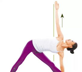 瑜伽正确的动作大全