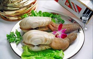 在乐山哪里买海鲜最好又新鲜??
